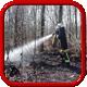 Brandeinsatz > Wald-/ Flächenbrand